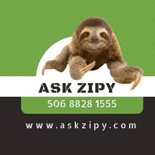 Ask Zipy Services