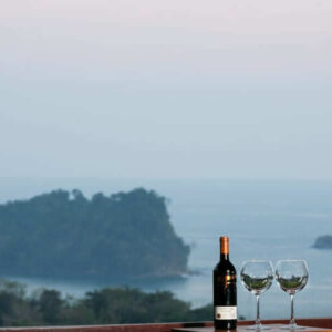 House rental with the best views of Manuel Antonio wine glass wine bottle
