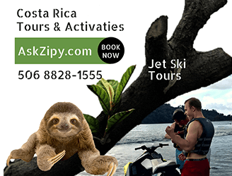 Ask Zipy - Book your tour now