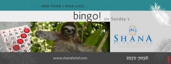 Bingo Sundays at Shana Hotel