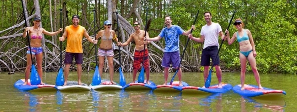 Paddle 9 - Paddle Boarding - Mangroves