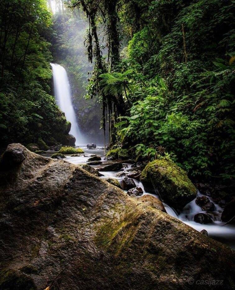 La Paz Waterfall Gardens & Peace Lodge