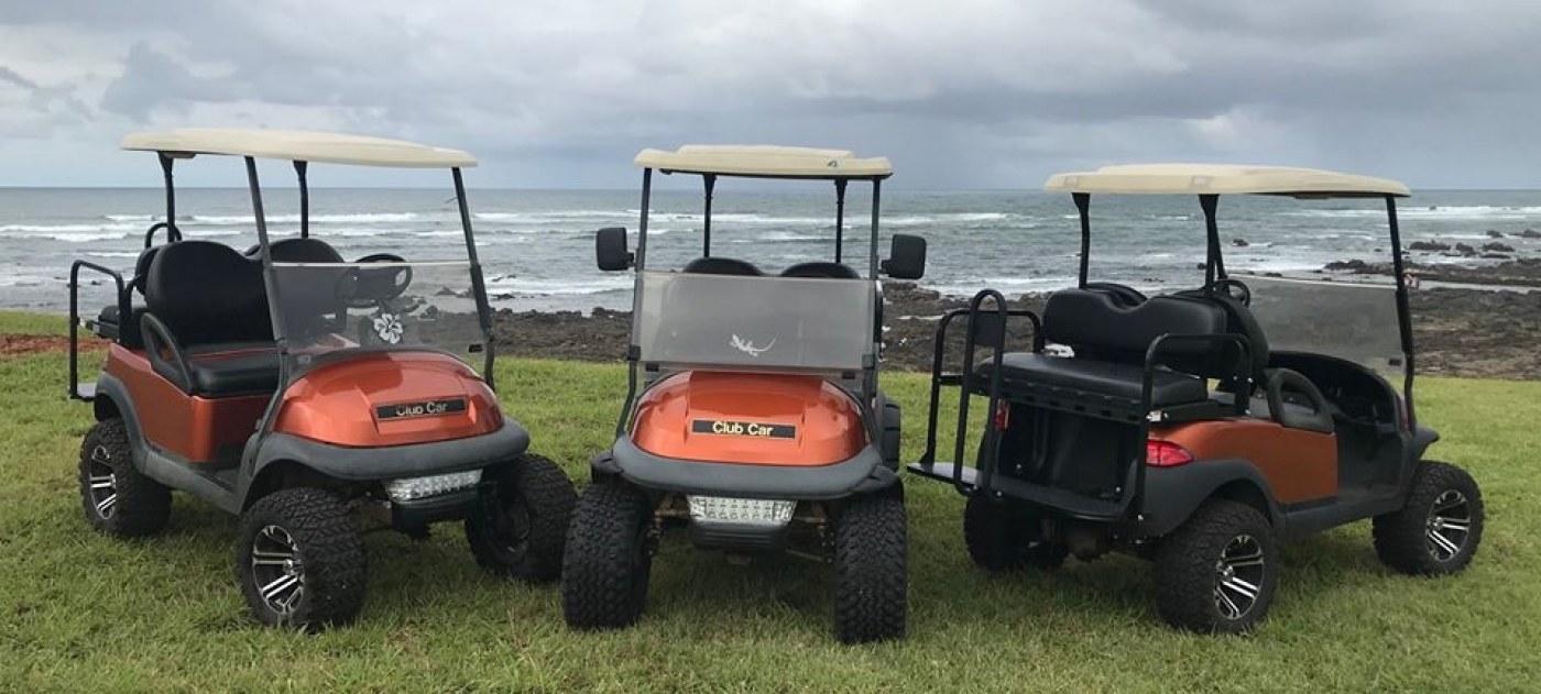Paradise Cart Rentals