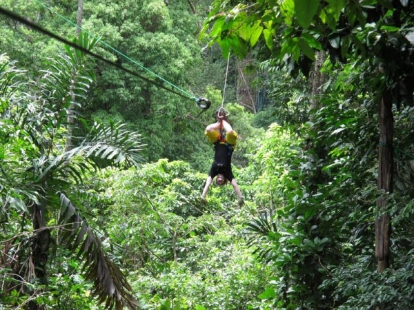 El Santuario Canopy
