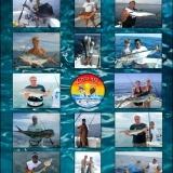 The world of fishing...