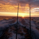 Boomerang Sport Fishing