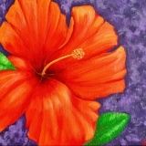 Tropical Dragonfly Studio - Exotic Fine Art - Acrylic on canvas hibiscus flower