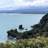Pacifico Colonial