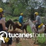 Tucanes Tours