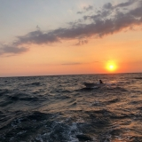 Sea Lounge Catamaran