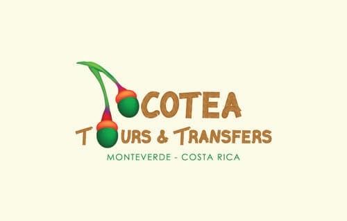 Ocotea Tours & Transfers