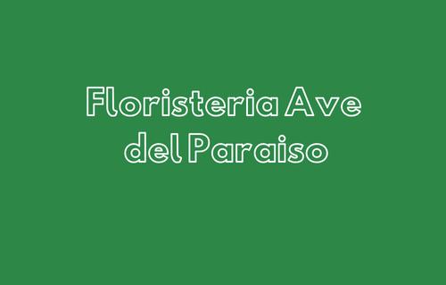 Floristeria Ave del
