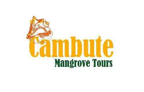Cambute Mangrove Tours