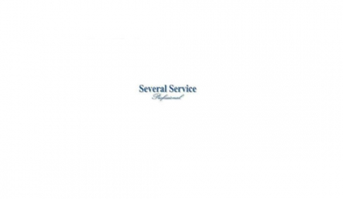 Several Service Profesional