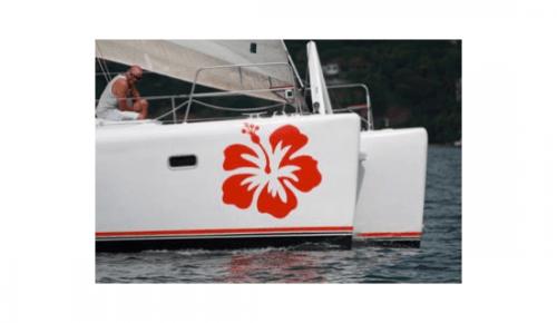 Sailing Hibiscus