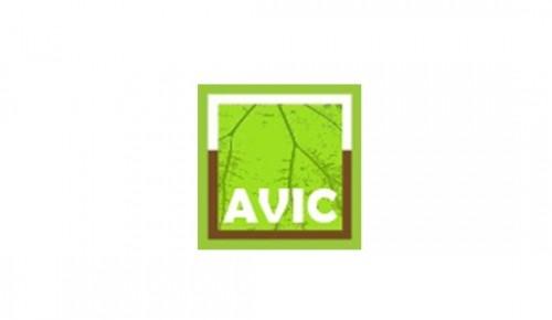 Association of International V