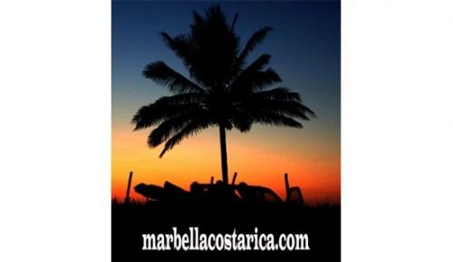 Grupo Marbella Real Estate