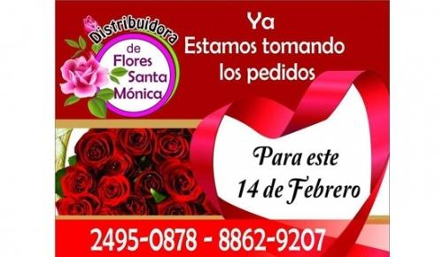 Distribuidora de Flores Santa