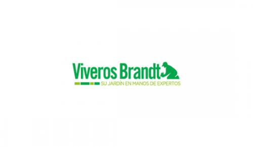 Vivero Brandt
