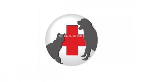 Veterinaria Animal Welfare