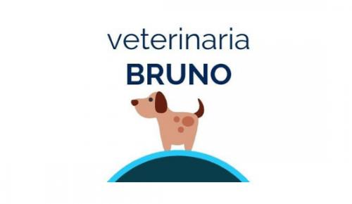 Veterinaria Bruno