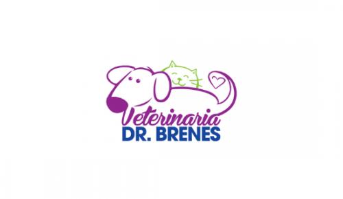 Veterinaria Doctor Brenes