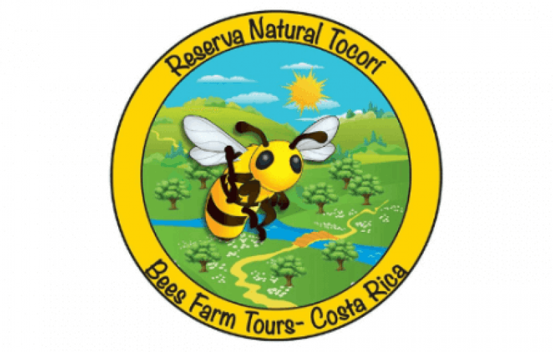 Manuel Antonio Bee Farm | Natural Reserve Tocorí