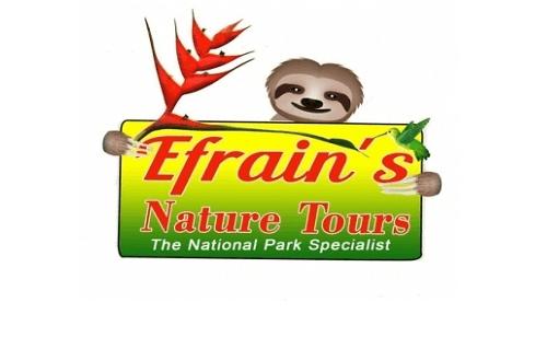 Efrain's Nature Tours | Manuel Antonio