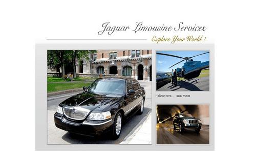 Jaguar Limousine Services