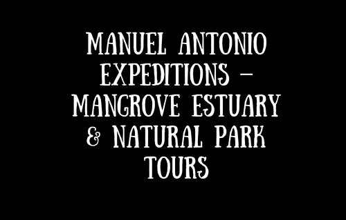Manuel Antonio Expeditions – Mangrove Estuary & Na
