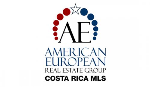American European Real Estate