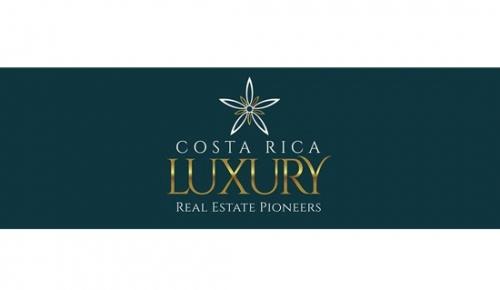 Luxury Real Estate Professiona