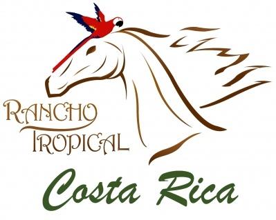 Osa Peninsula Horseback Riding