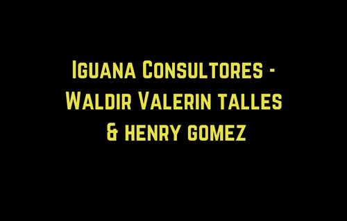 Iguana Consultores - Waldir Va