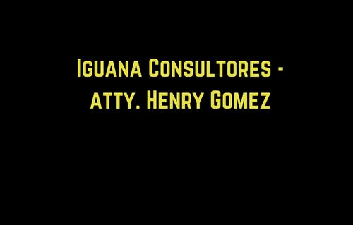 Iguana Consultores - Henry Gom