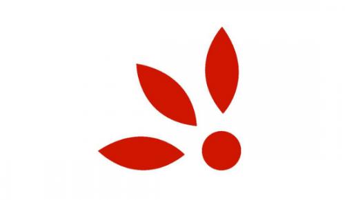 Costa Rica Flowers Online