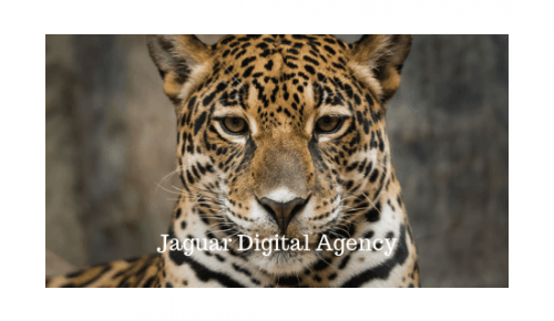 Jaguar Digital Agency