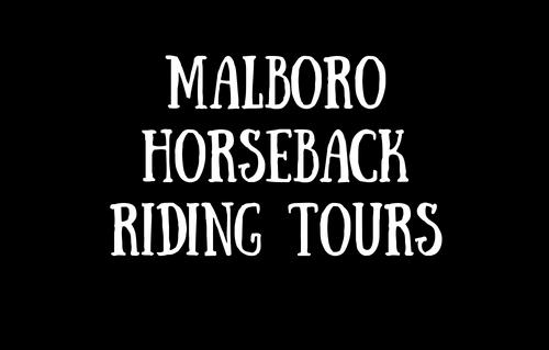 Malboro Horseback Riding Tours